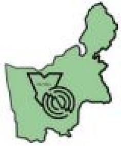 Промышленность региона: проблемы и перспективы инновационного развития
