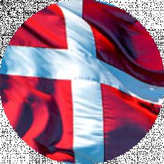 Международная научная конференция «Датский язык вчера, сегодня, завтра»