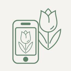 Виртуальный ботаник